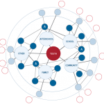 Using the Web of Support Framework